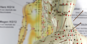 acupuntura-e-sistema-endocanabinoide