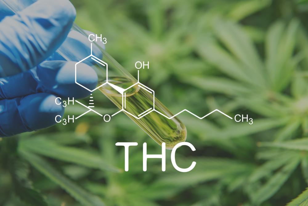 atributos medicinais do THC